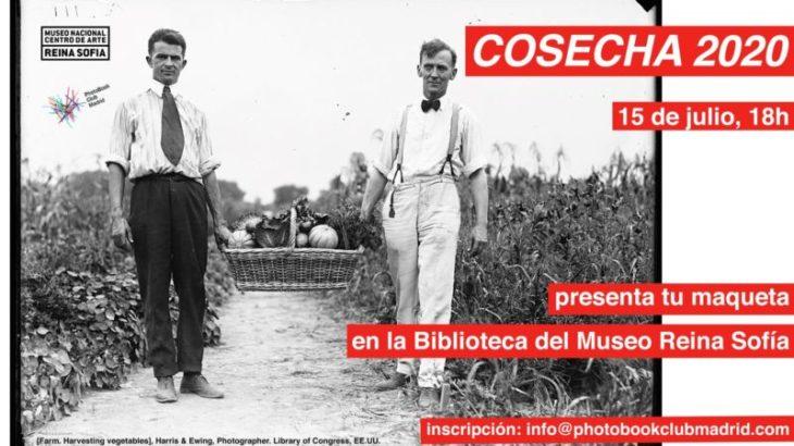 Cosecha 2020 / Museo Reina Sofía / 15 de julio